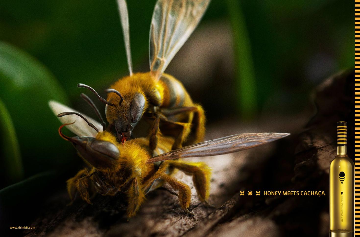 HONEY BEE CACHAÇA